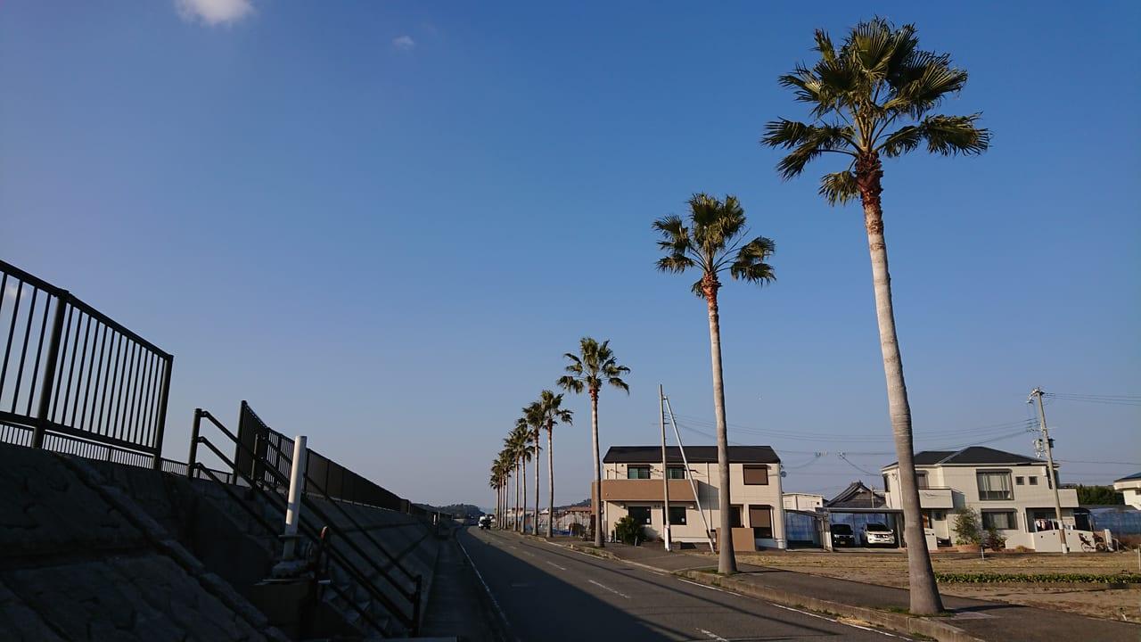 ジュニア 駅伝 県 和歌山